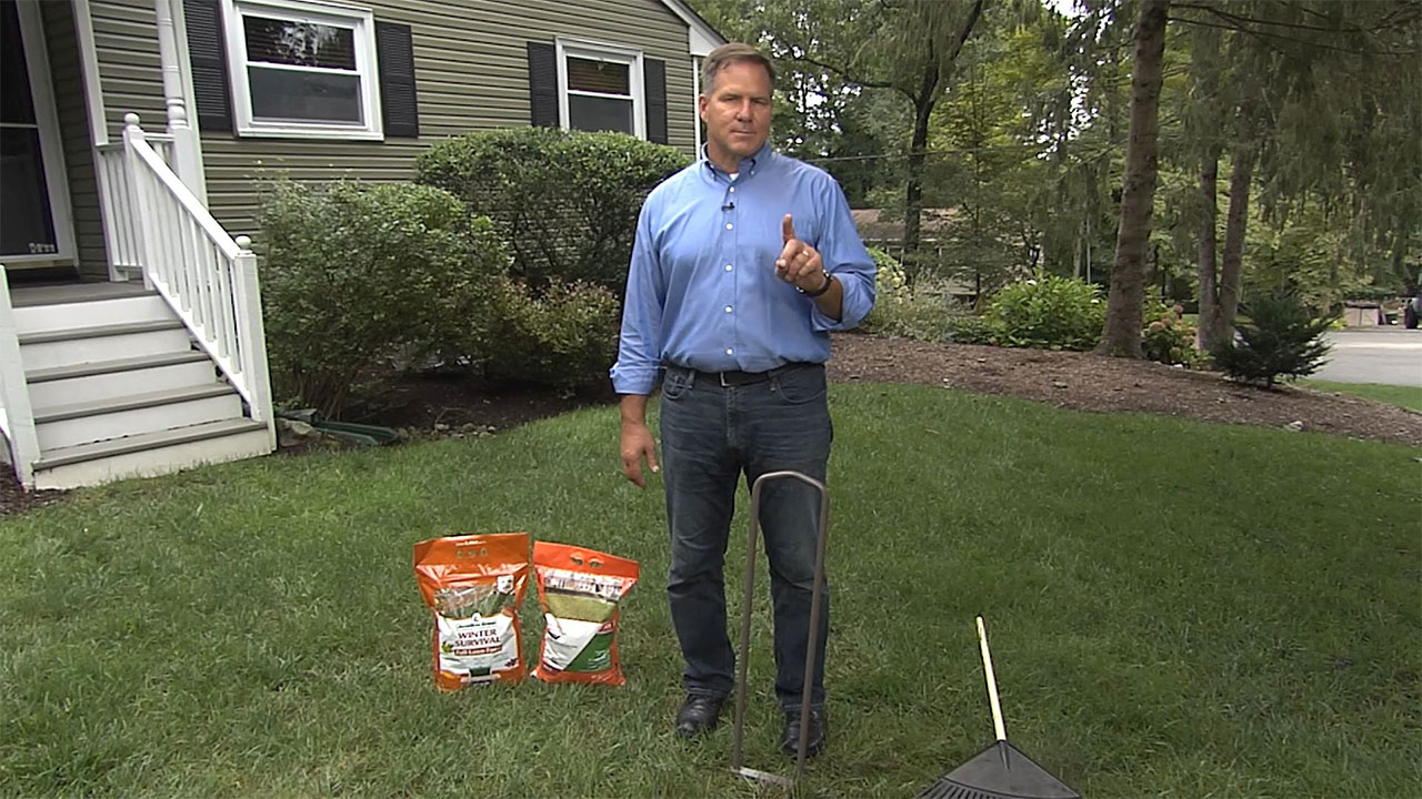 https://housesmartstv.com/wp-content/uploads/2021/10/tips-to-protect-your-lawn-during-winter.jpg